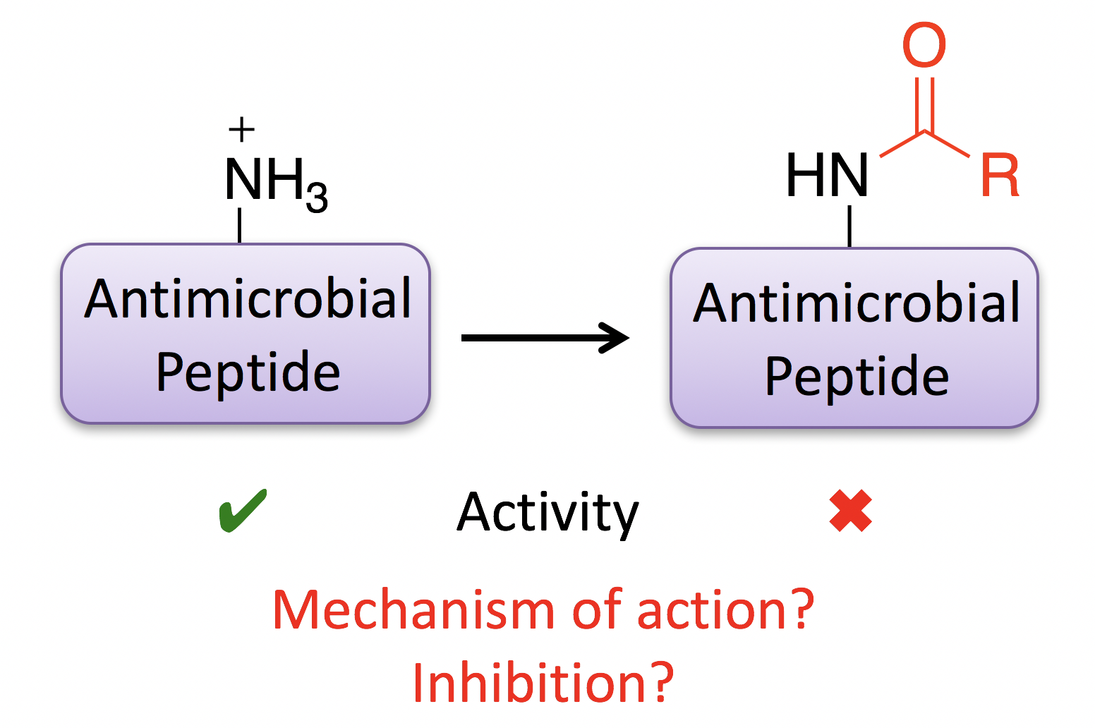 Inhibition of antimicrobial peptides by acylation